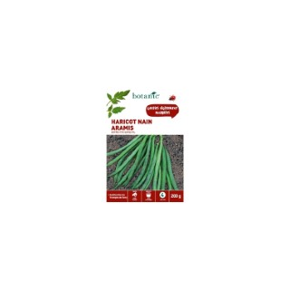 Haricot Nain Aramis Extra-Fin sans Fil 200 gr 261459
