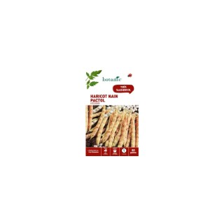 Haricot nain pactol a ecosser 80 Graines 261492