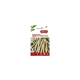Haricot nain michelet a longue cosse a ecosser 80 Graines 261495