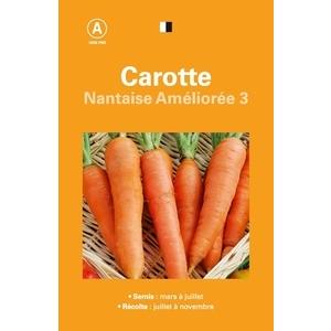 CAROTTE NANTAISE AMELIOREE 3 261516