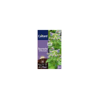 Bourrache officinale en sachet 263065