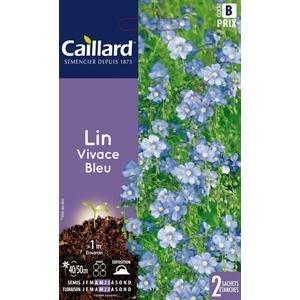 Lin vivace bleu en sachet 263122