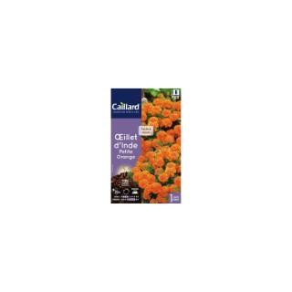 Œillet d'Inde petite orange en sachet 263146