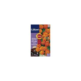 Œillet d'Inde Swing Honeycomb en sachet 263148