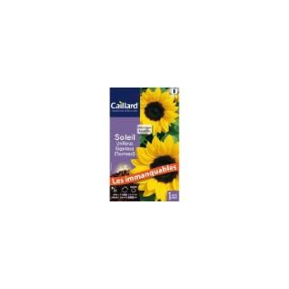 Soleil Uniflorus Giganteus - Tournesol - en sachet 263198