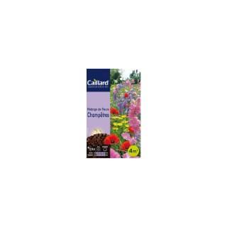 Mélange de fleurs champêtres en sachet 263217
