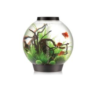Aquarium BiOrb 105 Black 277140