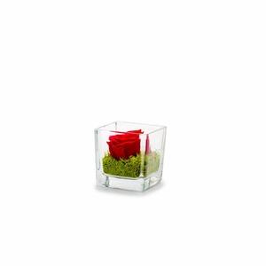 Verrine genova rouge 6 x 6 x 6 cm 292500