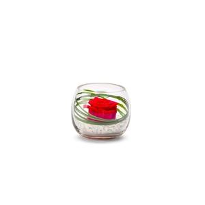Verrine venezia rouge Ø 8 cm 292506