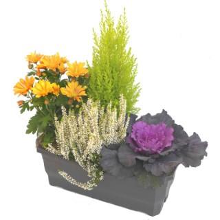 Jardinière d'automne orange. La jardinière de 40 cm