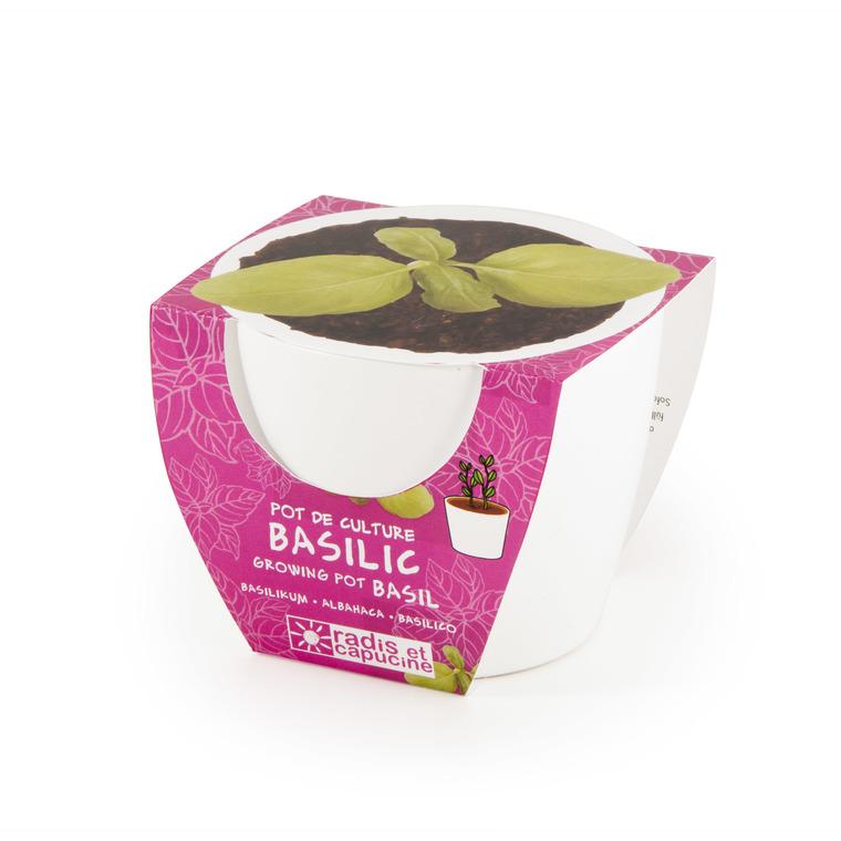 Mini kit céramique Basilic Grand Vert Bio