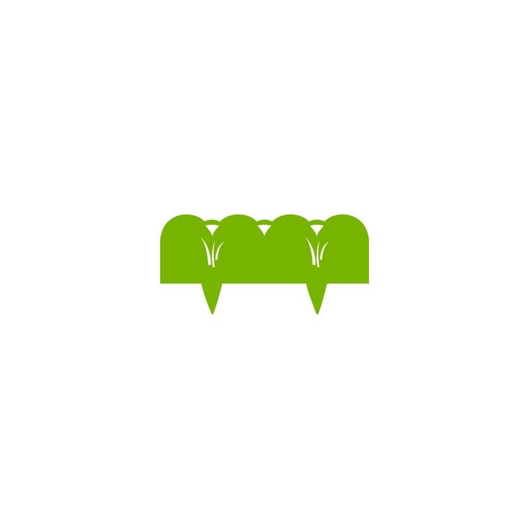 Bordure à piquer décor végétal vert anis en métal