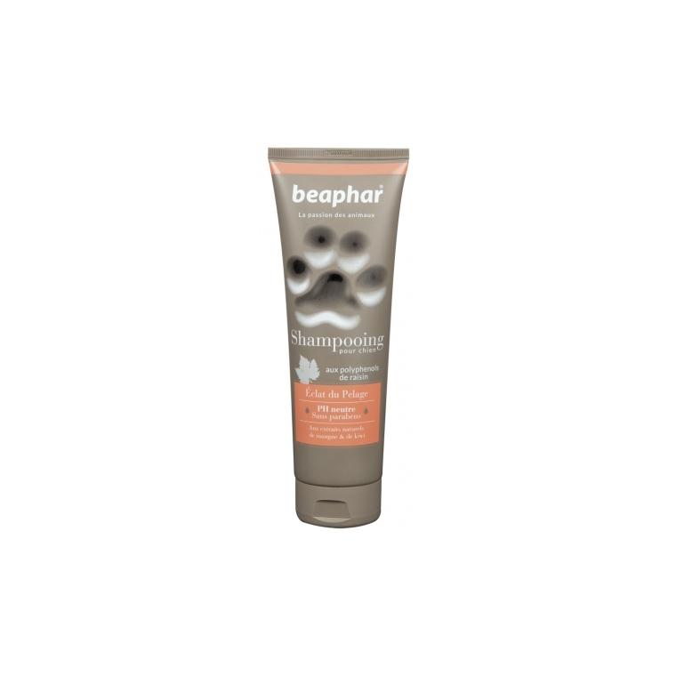 Shampoing Premium éclat du pelage pour chien 250 ml 209298