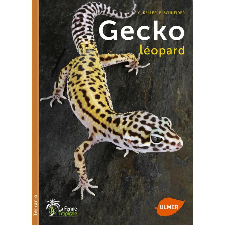 Gecko Léopard 96 pages Éditions Eugène ULMER 228867