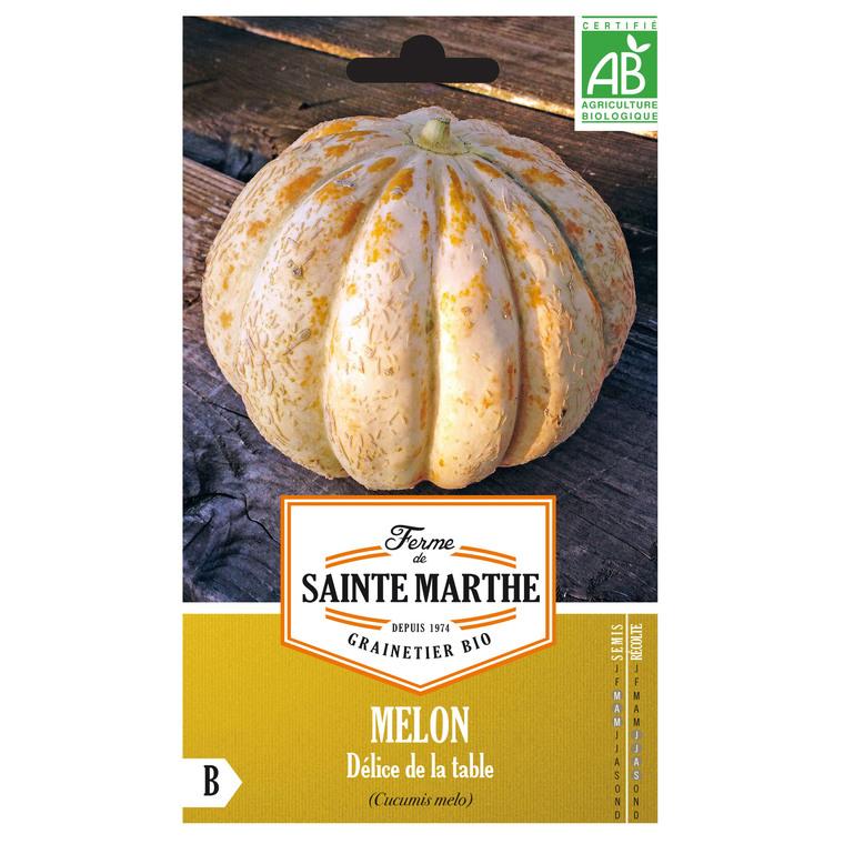 Melon Délice de la Table 232599