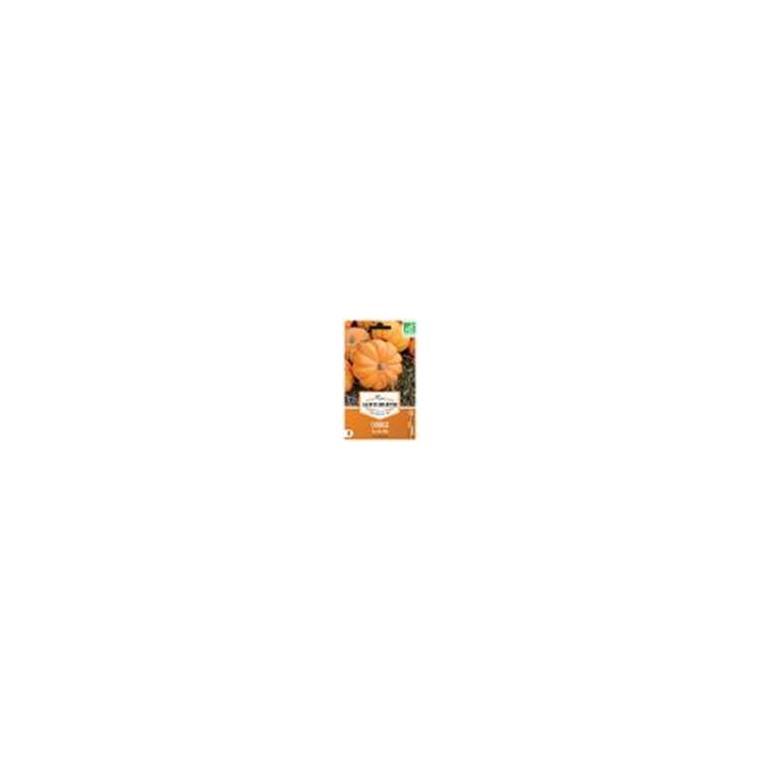 Graines de Courgette Jack be Little en sachet 232601