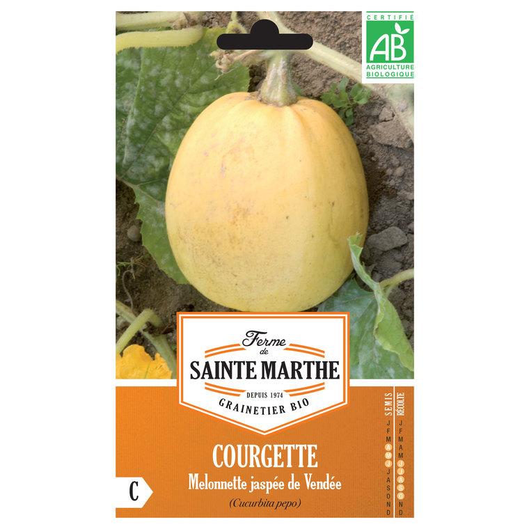 Courgette Melonnette Jaspée de Vendée 232603