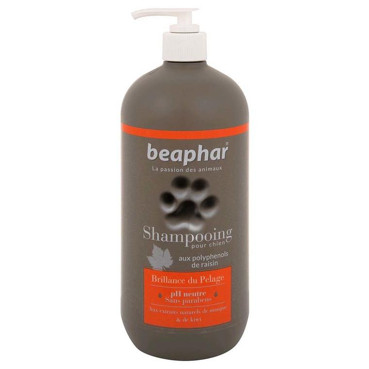 Shampoing Premium éclat du pelage pour chien 750 ml 233952