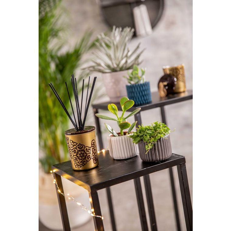 Bouquet Parfumé rechargeable Légendes d'Orient Esteban - 100 ml 234561
