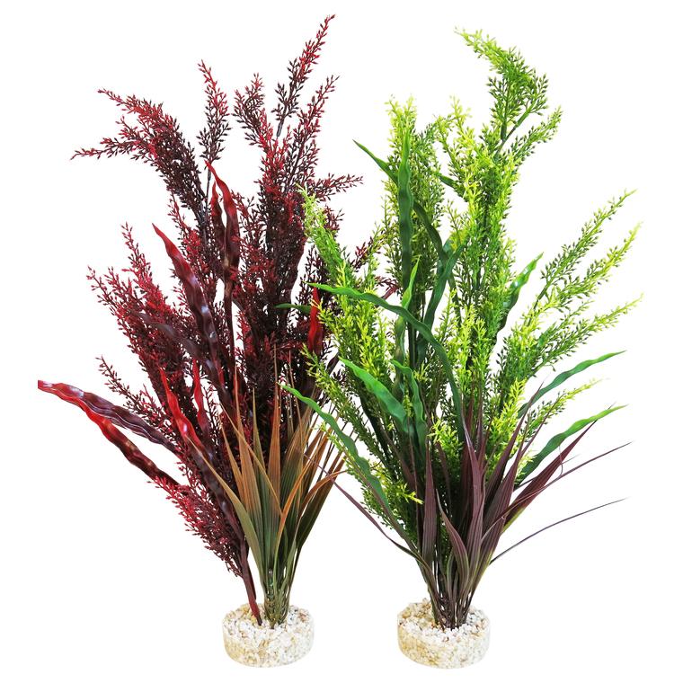 Aqua splendid grass 245731
