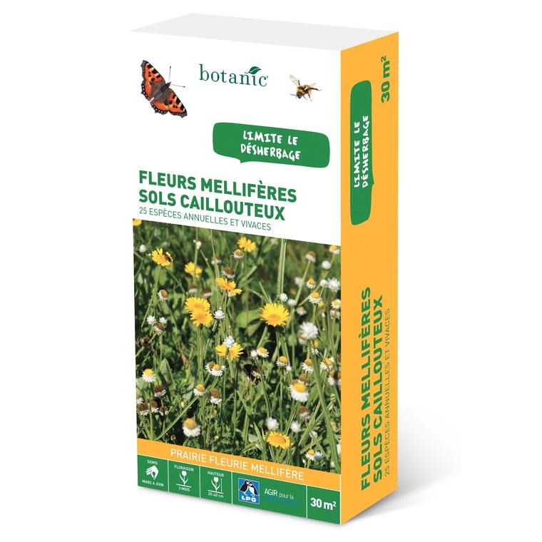 Fleurs mellifères sols caillouteux 260151