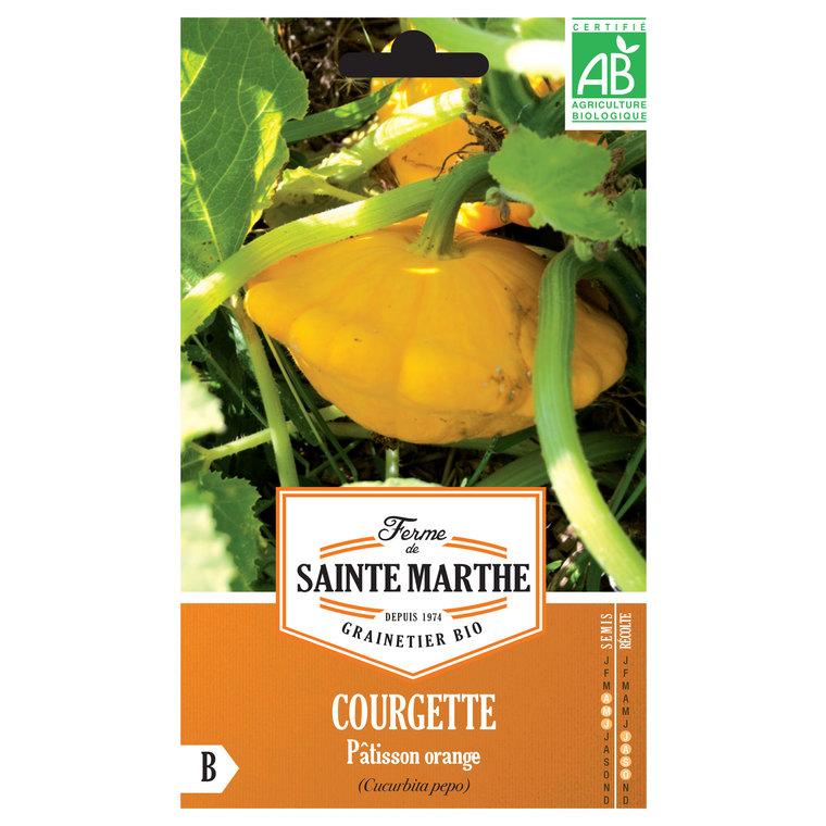 Courgette Patisson Orange 260661