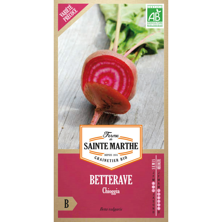 Betterave potagère Chioggia 260669