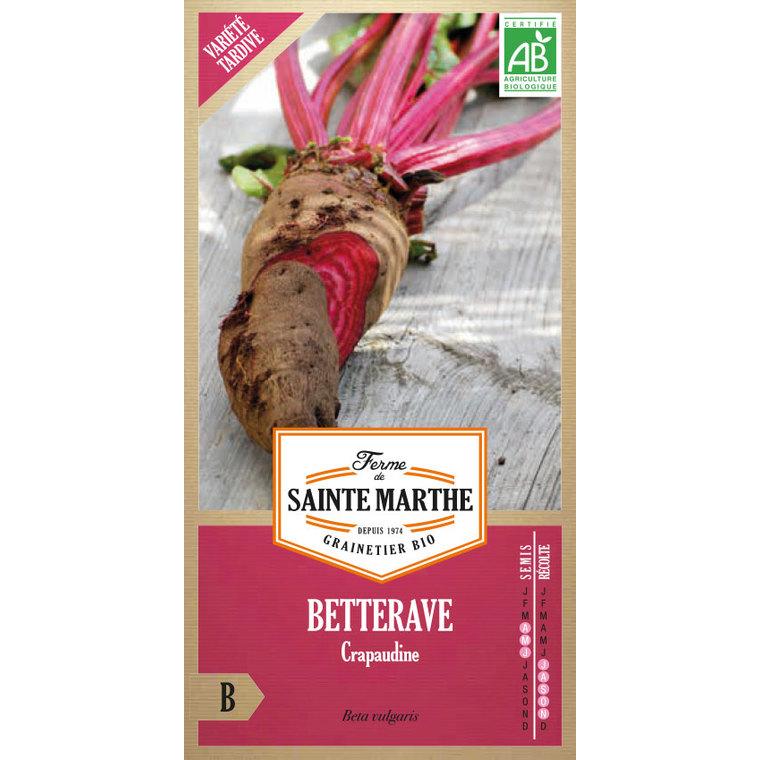 Betterave potagère Crapaudine 260670