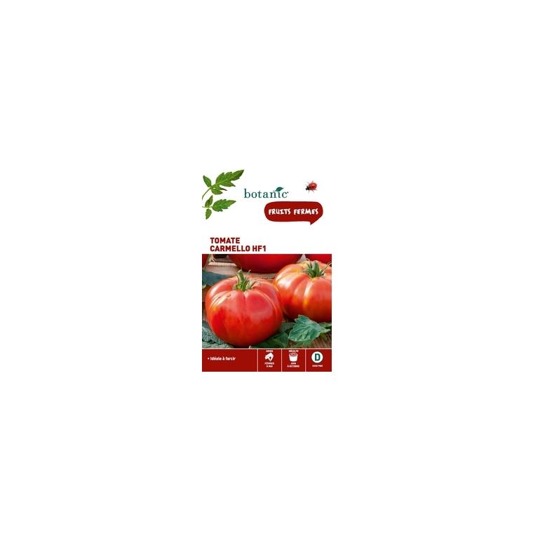 Tomate carmello HF1 261263