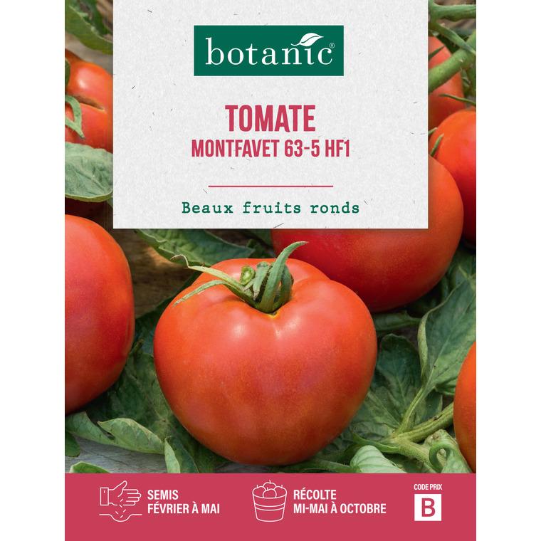 Tomate Montfavet 63-5 HF1 261266