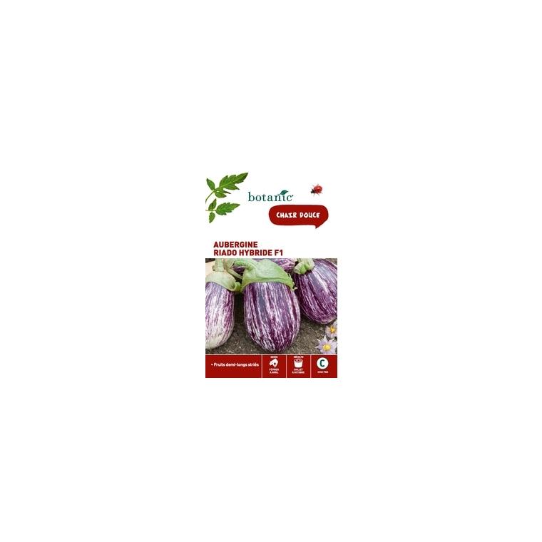 Aubergine Riado HF1 261271