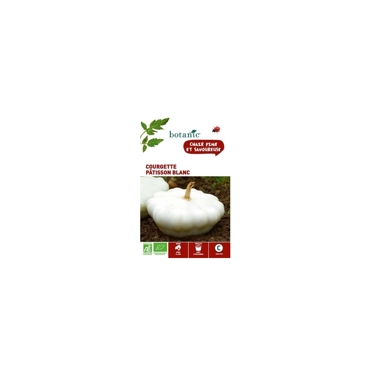 Courgette patisson blanc bio BIO 261388