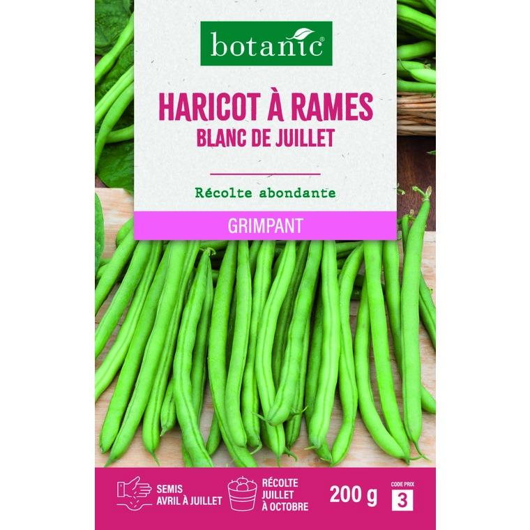 Haricot à Rames Blanc de Juillet Mangetout 200 gr 261488