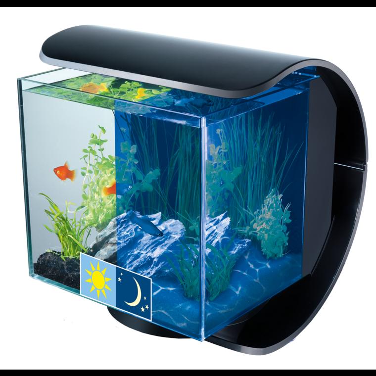 Aquarium Tetra Silhouette noir 12 L à éclairage Led 275330
