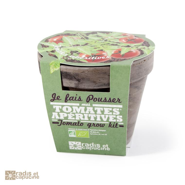 Pot terre cuite Tomate Cerise Bio