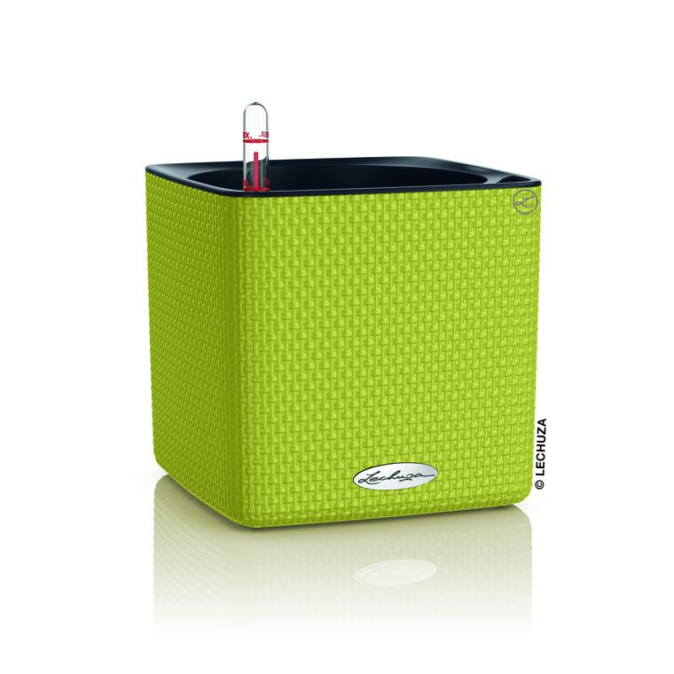 Cube Color 16 kit Complet citron vert