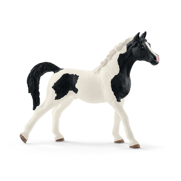 Figurine Etalon Pintabian Série horse Club 13,2x3,9x10 cm
