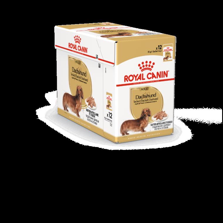 Sachets de nourriture pour Teckel Adulte Royal Canin - 12x85 gr