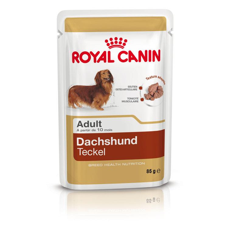 Sachet de nourriture pour Teckel Adulte Royal Canin - 85 gr
