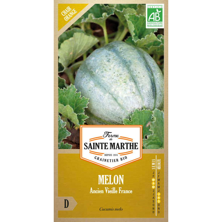 Melon Ancien Vieille France