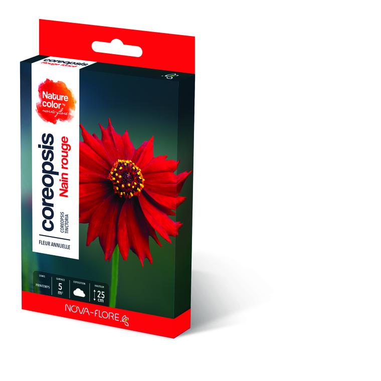 Semences pour coreopsis rouge foncé – 5 m2