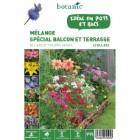 40 bulbes de Mélange spécial Balcon Terrasse – Couleurs variées