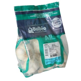Bulbes d'ail rose arno calibre 50+, 500 g