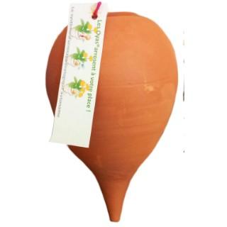 Oya à planter - Beige 307661
