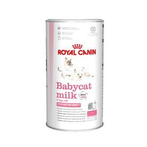Lait poudre Royal Canin chaton 1er âge 300g