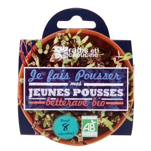 Coupelle Jeunes Pousses betterave rouge Bio