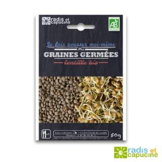 Graines à germer Lentille Bio