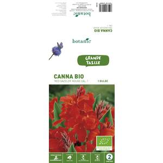Canna Red Dazzler BIO – Rouge