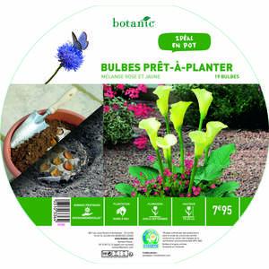 19 bulbes en mélange prêt à planter – Rose/Jaune