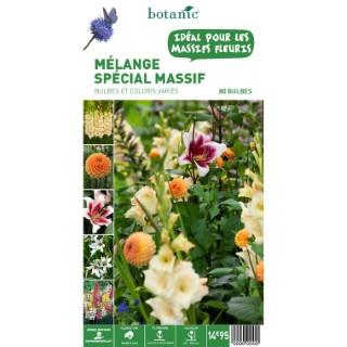 80 bulbes de Mélange spécial Massif – Couleurs Variées 310359